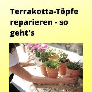Terrakotta-Töpfe reparieren - so geht's